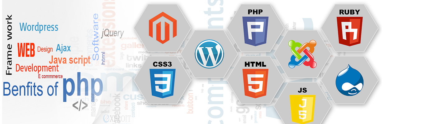 Cheap Freelance Website Designer In Delhi Ncr Website Maker In Delhi Web Design In Delhi