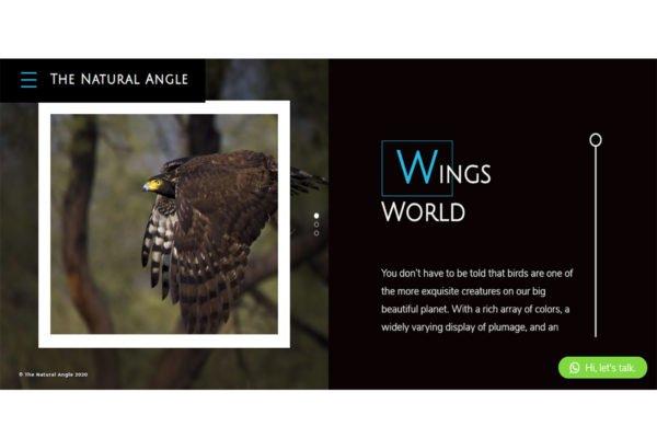 thenaturalangle   Photography Website Designing