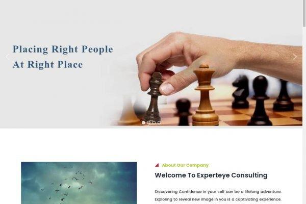 Expert Eye Consulting- Consulting Website Design in Delhi India.