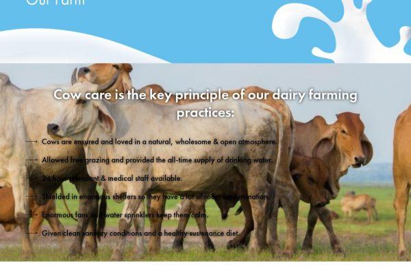Dairyfreshmilk- Agro Website Designing in Delhi India